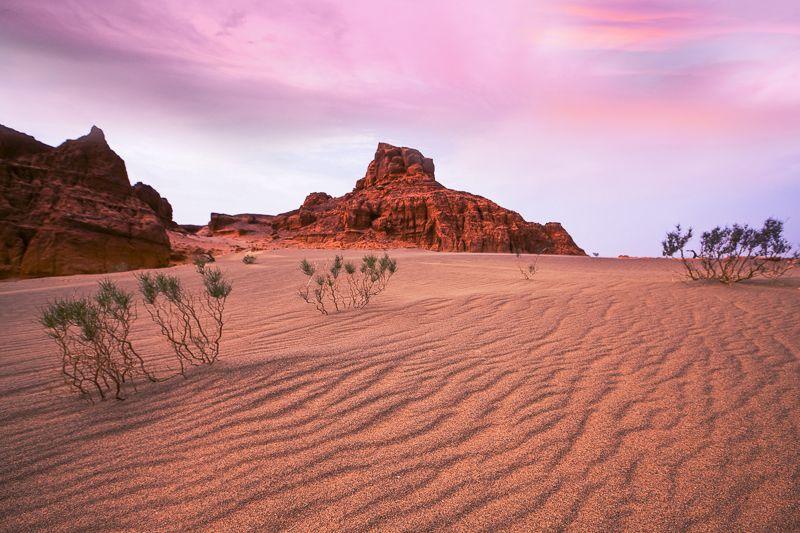 Der Wüste Gobi